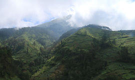 Slopes of Mount Sumbing Stock Images