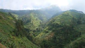 Slopes of Mount Sumbing Stock Image