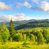 Slopes of mountains, coniferous trees and clouds in the evening sky. Picturesque and gorgeous scene. Location place Carpathian,. Ukraine, Europe. Concept royalty free stock photos