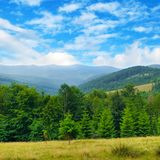 Slopes of mountains, coniferous trees and clouds in the sky. Picturesque and gorgeous scene. Location place Carpathian, Ukraine, Europe. Concept ecology stock photos