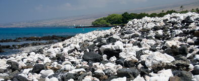 Slopes near Kaunaoa beach covered by white rocks and corals Royalty Free Stock Images