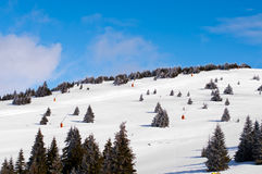 Slopes for skiing Stock Image