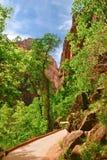 Slopes of Zion canyon. Utah. USA. Stock Photography