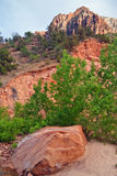 Slopes of Zion canyon. Utah. USA. Royalty Free Stock Images