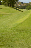 Sloping fairway Stock Photos