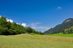 Sloping field. In Switzelrand, August royalty free stock photography
