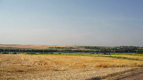 Sloping field of wheat and the road stock footage