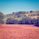 Sloping Hills Stock Photo