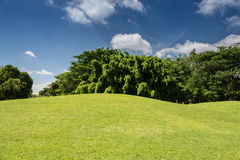 Sloping Meadows green grass Stock Photo