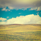 Sloping Meadows. Yellow Sloping Meadows of Tuscany, Retro Effect Royalty Free Stock Photography