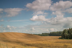 Sloping montainous field in the country side with white beautiful clouds. In the summer skies in Latvia Royalty Free Stock Image