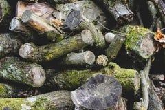 Slordige grijze logboeken en takken met groen mos royalty-vrije stock afbeeldingen