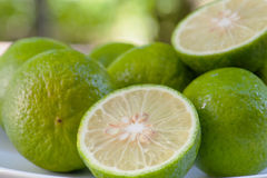 Sloseup Lime slice Royalty Free Stock Photos