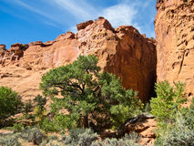 Slot canyon entrance Royalty Free Stock Images
