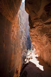 Slot Canyon Zion NP Royalty Free Stock Photos