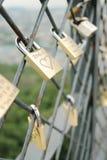 Sloten op ketting-verbinding omheining Stock Fotografie