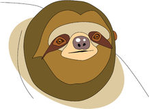 Sloth Stock Images