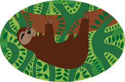sloth Stockfoto