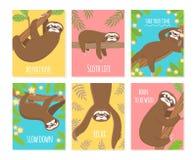 Sloth card. Cute slumber animal, sleepy lazy sloths. Child t-shirt, pajamas design stock illustration