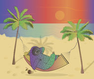 SLoth. Holiday on the sand beach Stock Photography
