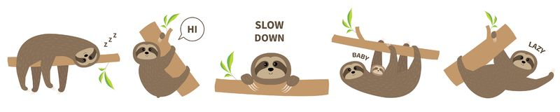 Sloth icon set line. Mother with baby. Cute lazy cartoon kawaii character. Slow down text. Tree branch Wild joungle animal royalty free illustration