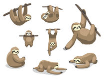 Sloth Poses Cartoon Vector Illustration royalty free illustration