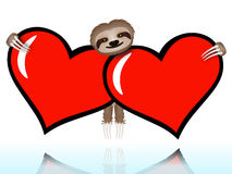 Sloth on Valentines Day Stock Photo