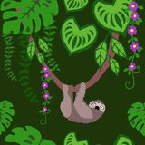 Sloths and Tropical Plants Seamless Pattern, Exotic Birds Rainforest Tropical Leaves Repeated Pattern Backround vector illustration
