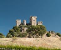 Slott av Almodovar del Rio Royaltyfri Fotografi