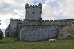 Slott av dålig bentheim i Tyskland Arkivfoton