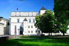 Slott av de storslagna hertigarna av Litauen i den Vilnius staden Royaltyfri Bild