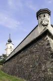 Slott av Rzeszow. Royaltyfri Fotografi