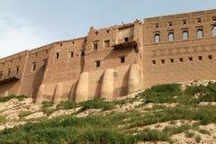Slottet av Erbil, Irak. fotografering för bildbyråer
