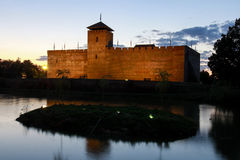 Slott av Gyula i sydlig Ungern Arkivbild