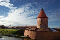 Slott av Kaunas (Litauen) Royaltyfria Bilder