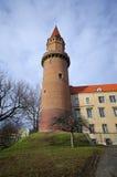Slott av Legnica, Polen Fotografering för Bildbyråer