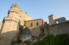 Slott av Olite - Spanien Royaltyfri Foto
