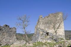 Slott av Petrapilosaen Royaltyfri Foto