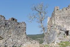 Slott av Petrapilosaen Arkivbilder
