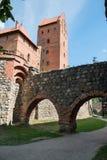 Slott av Trakai royaltyfria foton