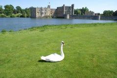 slott england leeds Royaltyfria Bilder
