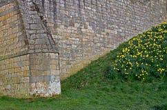 Slott för detalj för textur för stenvägg medeltida arkivbild