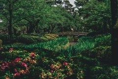 Slott för Japan trädgårdbro fotografering för bildbyråer