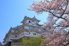 slott himeji japan Royaltyfria Bilder