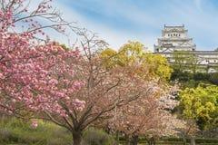 slott himeji japan Royaltyfri Fotografi