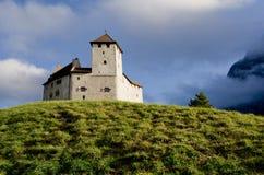 Slott i Balzers, Lichtenstein Royaltyfri Bild