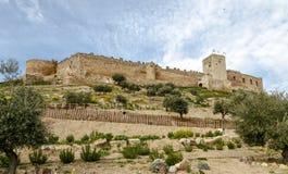Slott i Medellin, Badajoz landskap, Spanien Fotografering för Bildbyråer