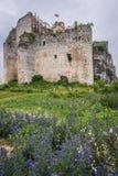 Slott i Mirow fotografering för bildbyråer