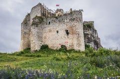 Slott i Mirow arkivbilder