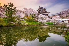 Slott i Nara Japan Arkivbild